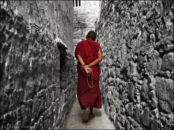 Лекция «Мудрость Тибета»