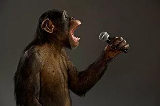 Свободный Микрофон в Черной Дыре