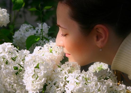 cvetochnyj_zapakh_v_komnate