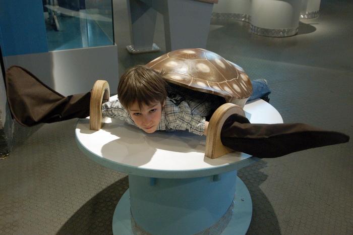 Выставка Музей человека «Живые системы»