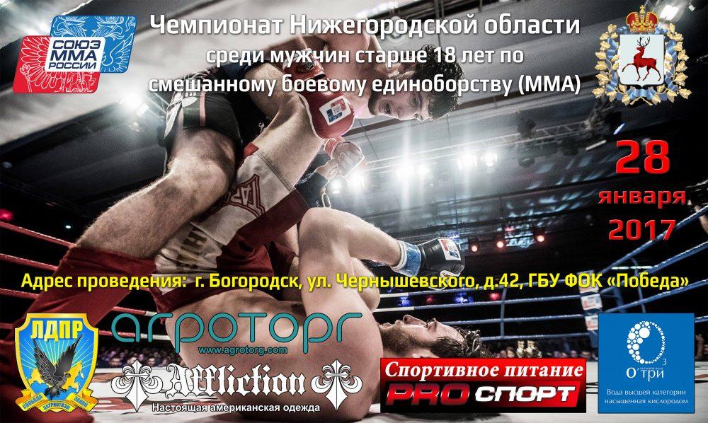 Чемпионат Нижегородской области среди мужчин старше 18 лет по СБЕ (ММА)
