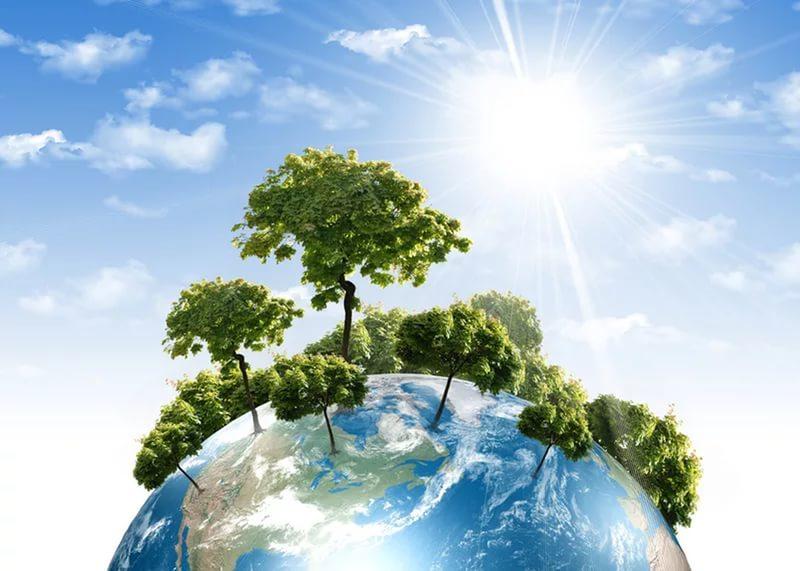 Экспозиция Экология и охрана окружающей среды: от А до Я