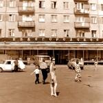 Улица Горького, площадь Горького, площадь Свободы и немного Белинки в городе Горьком! Ретро фото.