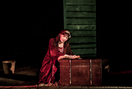 Опера Анна — Марина