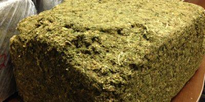 В американском штате Миссисипи собака принесла своему хозяину с прогулки полукилограммовый пакет с марихуаной