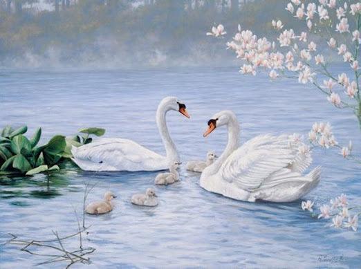 Птица лебедь и секс в живописи