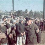 Война глазами врага. 1941 год в цветных фотографиях.