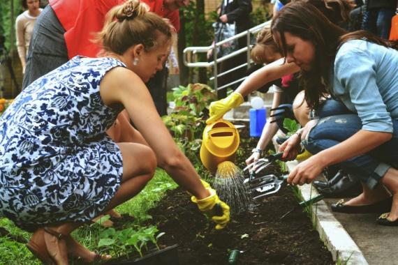Встреча «День городского садоводства»