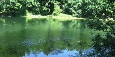 Щелоковское озеро №2