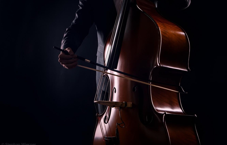 Оркестр крупным планом (1-й концерт цикла)
