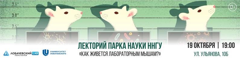 Лекция Андрея Миронова «Как живется лабораторным мышам?»