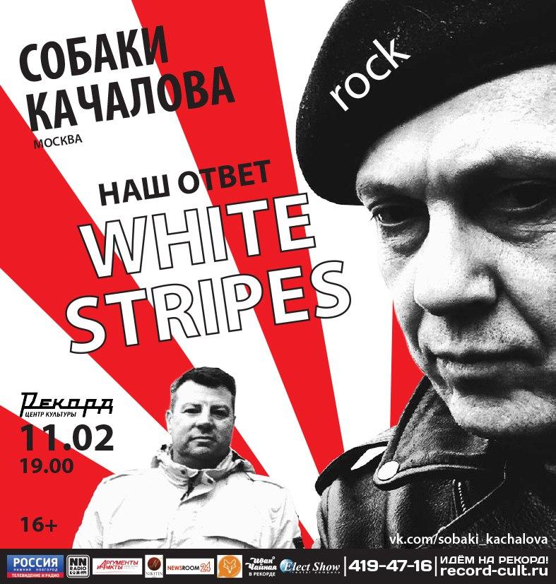 Концерт рок-группы Собаки Качалова