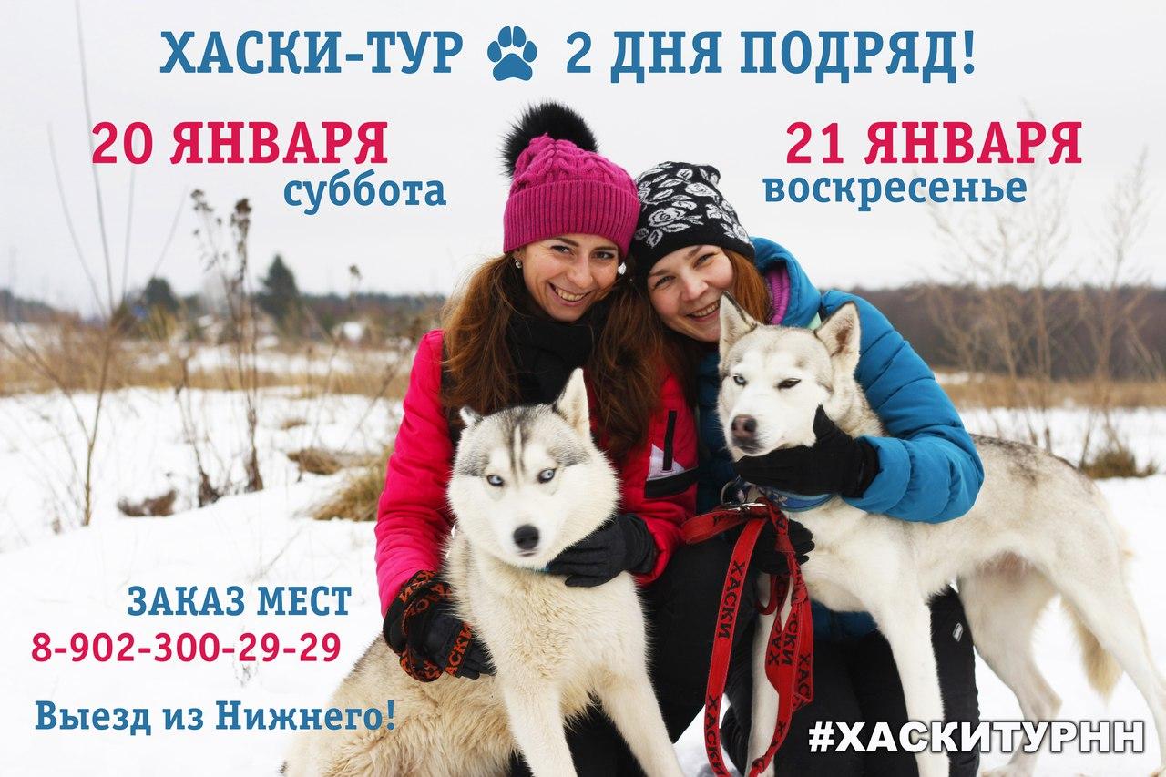Автобусный тур из Нижнего Новгорода В гостях у хаски