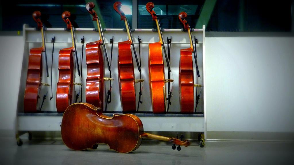 Оркестр крупным планом (3-й концерт цикла)