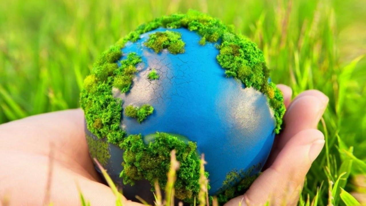 экологическая беседа Планета чудес и загадок