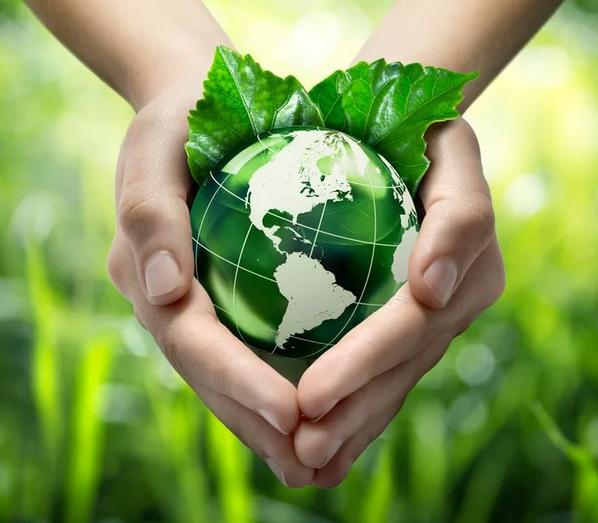 Открытая дискуссия Экологическая ответственность бизнеса