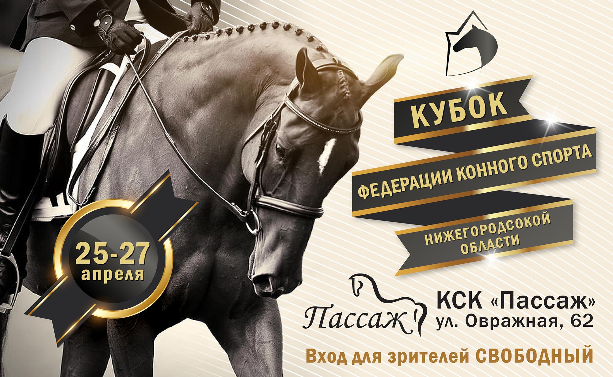 Кубок Федерации конного спорта Нижегородской области по выездке