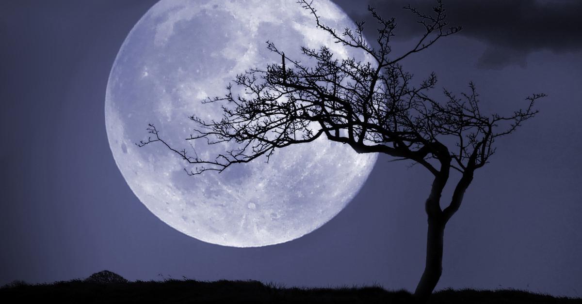Ночь наблюдателей Луны