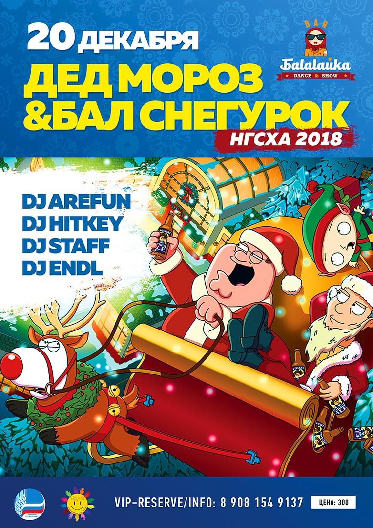 Вечеринка Дед Мороз бал Снегурок НГСХА 2018