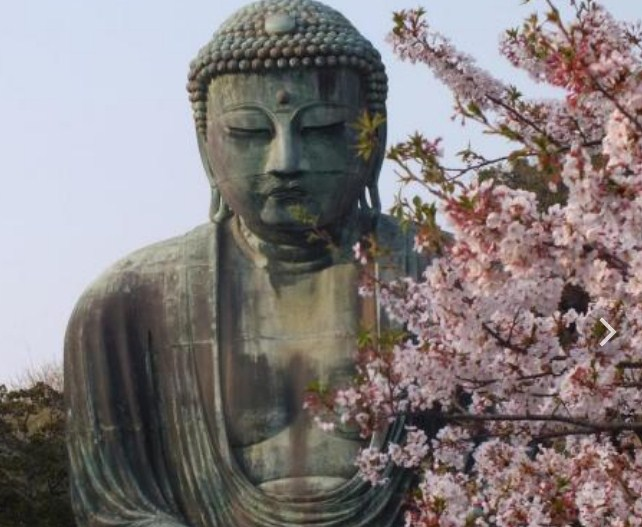 библиотечная программа «Путешествие в страну сакуры»