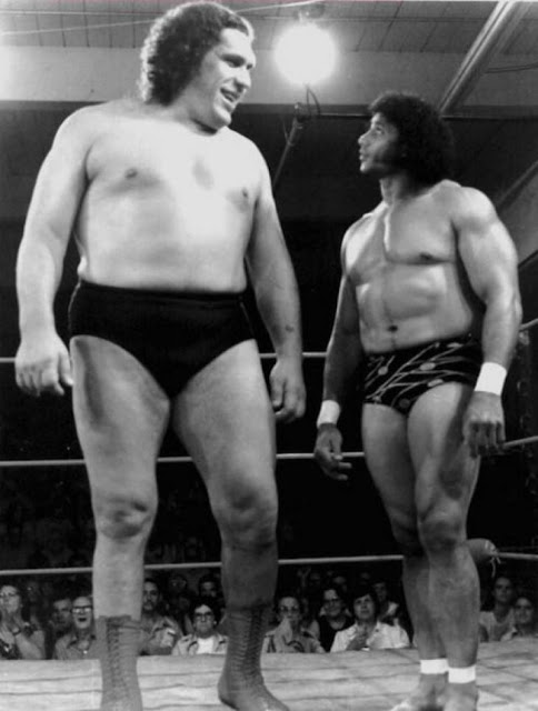 18. André compared to a fellow wrestler in the World Wrestling Federation.