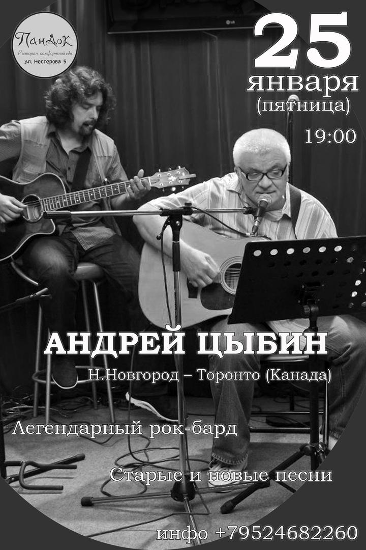 Концерт АНДРЕЙ ЦЫБИН