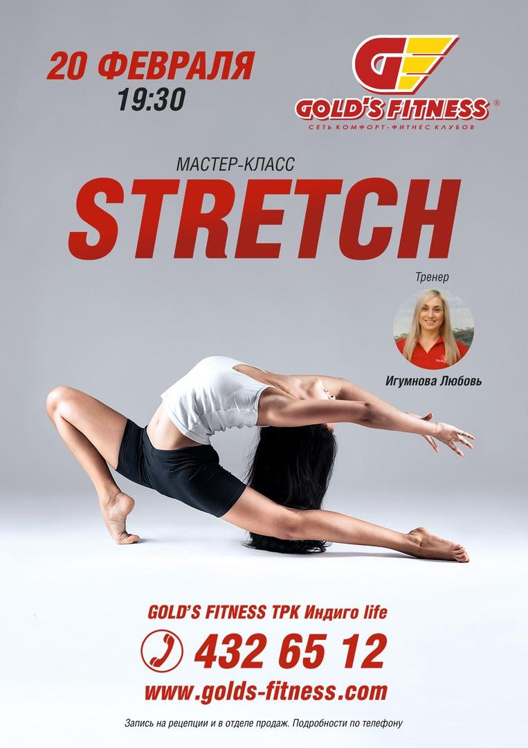 мастер-класс по направлению Stretch