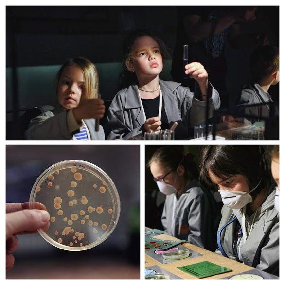 Интерактивная научная программа «Охотники за микробами»