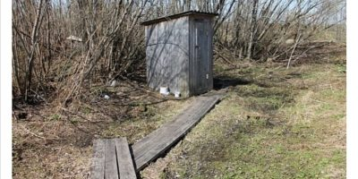 сколько детей утонуло в деревенских туалетах