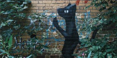 Граффити и Стрит-Арт Городской кот