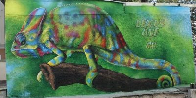 Граффити и Стрит-Арт Хамелеон