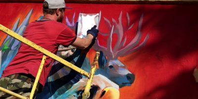 Граффити и Стрит-Арт Природа бьет тревогу