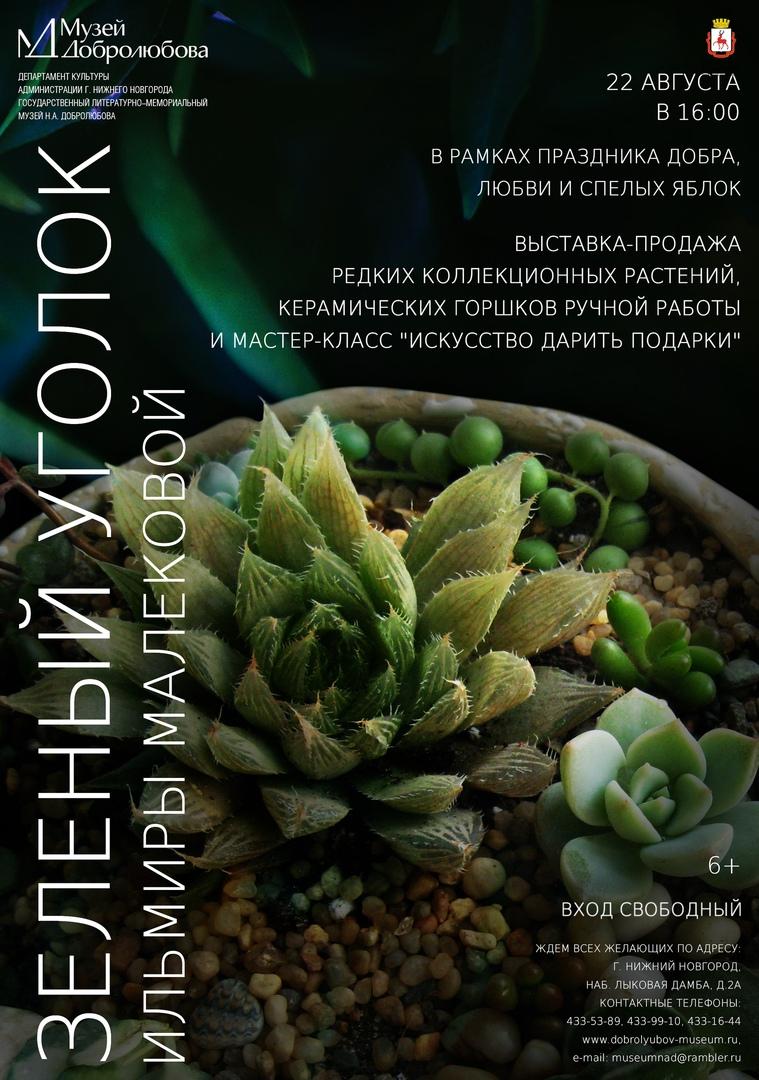 выставка-продажа Зеленый уголок Ильмиры Малековой»