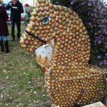 фестиваль Картофельный Бум