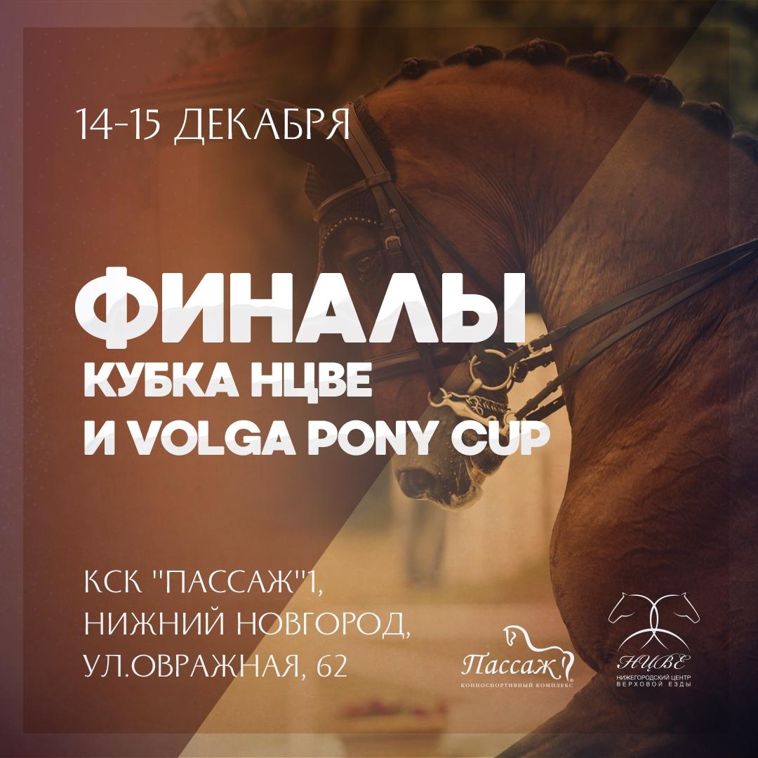Финал Кубка Нижегородского Центра Верховой Езды